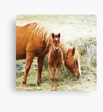 Mama and Little One Canvas Print