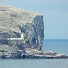 Lighthouse on the Bass Rock by Jennifer J Watson