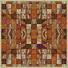 Checkered by Dana Roper
