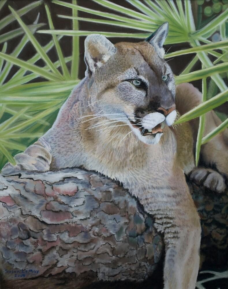 Florida Panther by Susan LeMay RN
