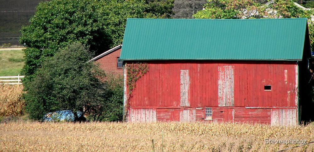 Red Barn in Ohio by Stevesphotoz