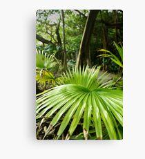Southlands - Palm Canvas Print