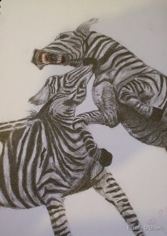 Zebras Fighting von Estelle O'Brien
