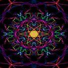 Algorithm Art #15 by RedFox31