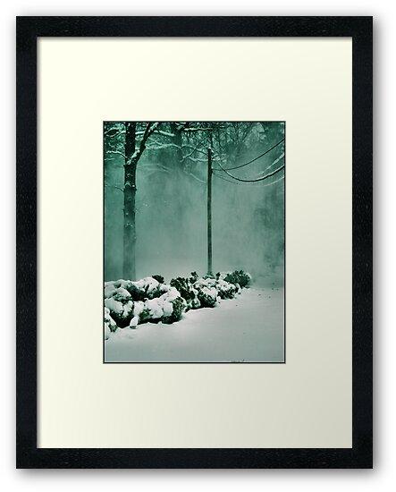 Winter Magic by Jessie Cousins