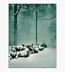 Winter Magic Photographic Print