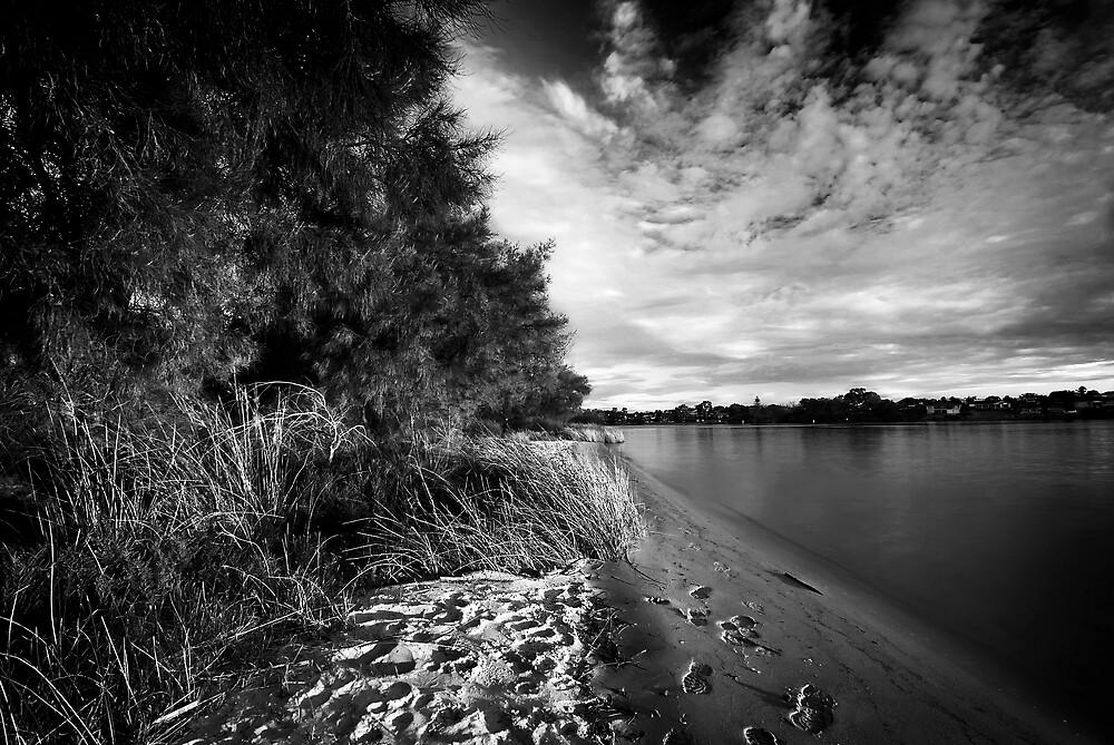 Salter Point by Damiend
