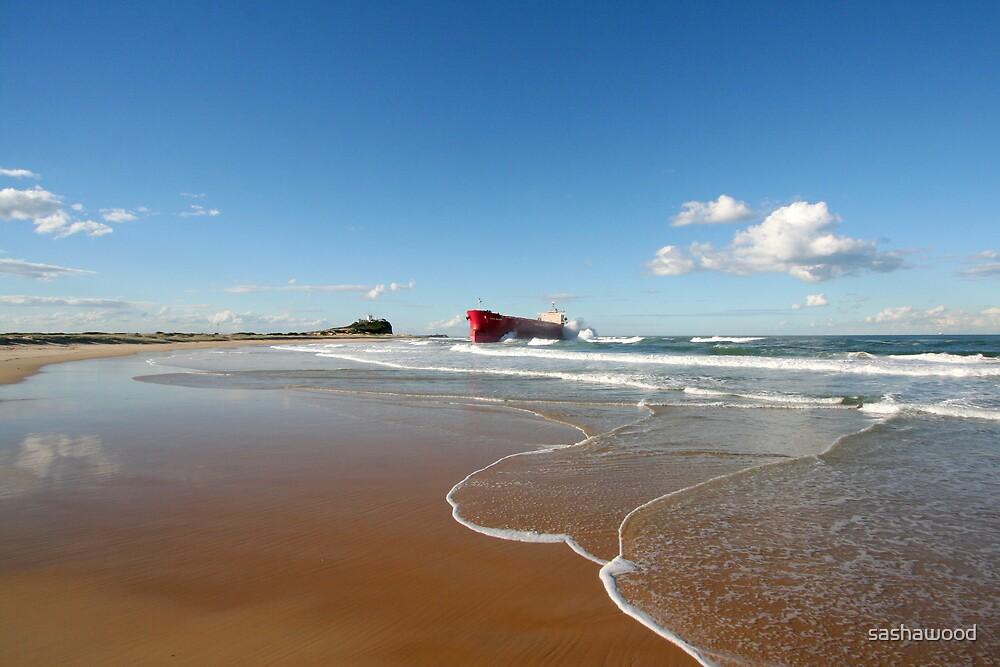 Pasha Bulker, Nobbys Beach NSW June 07 by sashawood