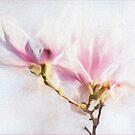 High Key Textured Magnolias by Gerda Grice