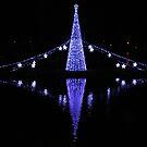 Christmas Lights in Torquay Harbour by lezvee