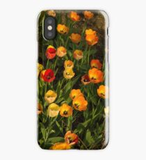 Happy, Sunny, Messy Tulip Tangle iPhone Case/Skin