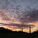 Washington National Mall Skyline and a Spectacular Sky by Georgia Mizuleva