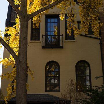 Washington, DC Facades - Dupont Circle Neighborhood in Yellow by GeorgiaM