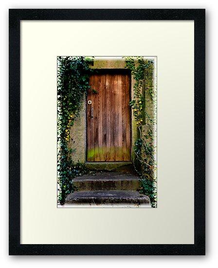 Moss covered old Door by Angelika  Vogel