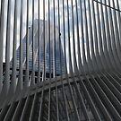 Modern Architecture, Lower Manhattan, New York City  by lenspiro