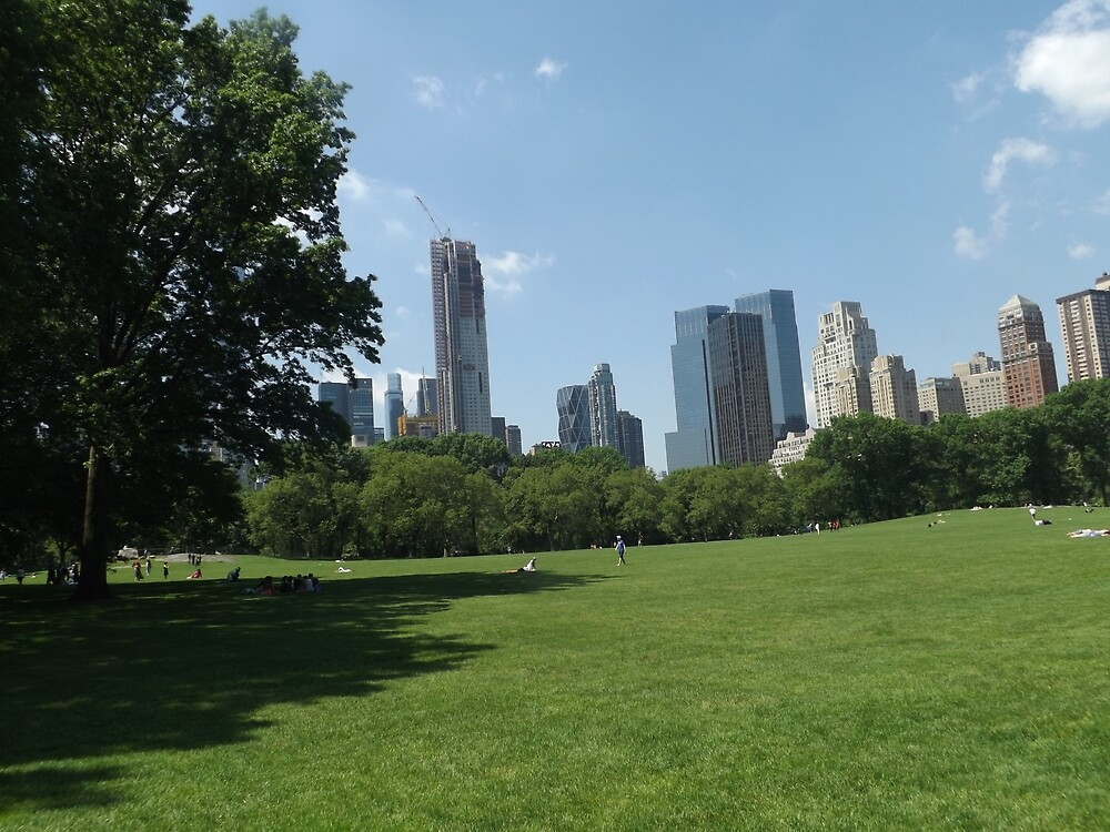 Lawn, Skyline, Park, Skyscrapers, New York City by lenspiro