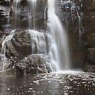 0370 Sheoak Falls - Otways by Hans Kawitzki
