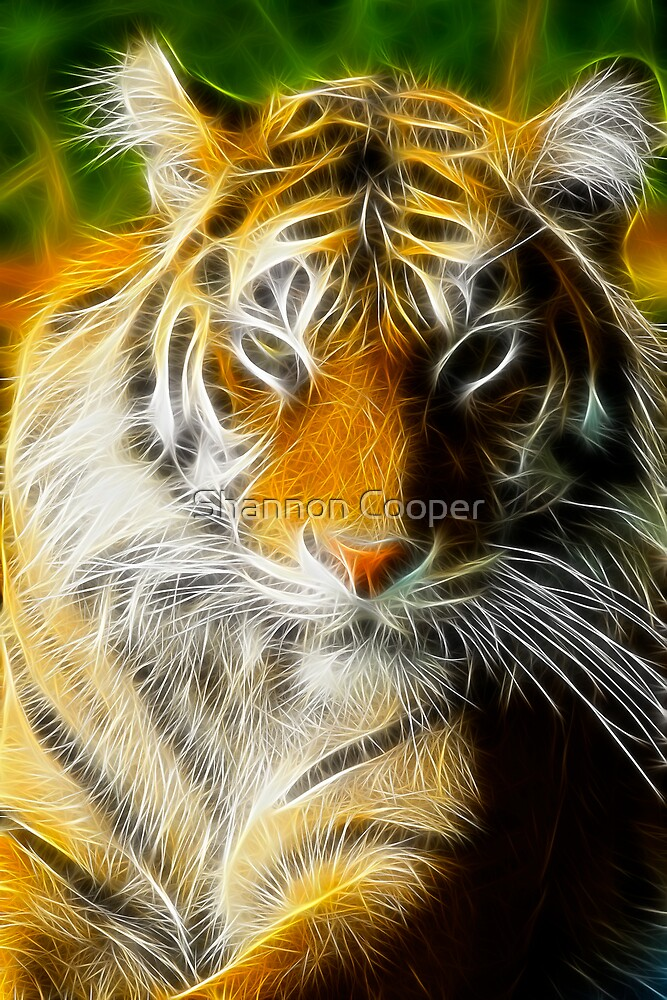 Regal by Shannon Beauford