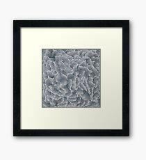 Yayoi Kusama, INFINITY NETS [MAE], 2013 Framed Print