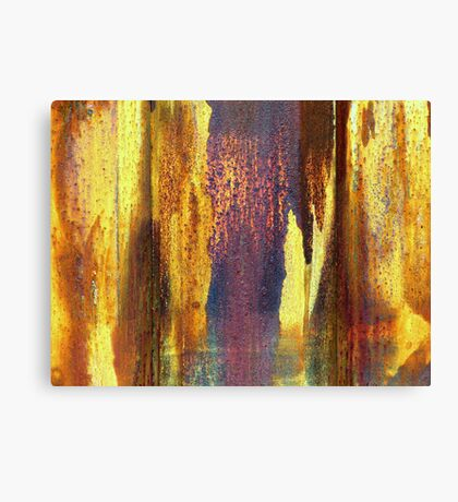 Colors of rust Canvas Print