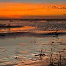 Grayland Beach Mud Flats at Sunset 2 by Zigzagmtart