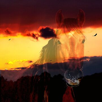 Geno / Bonita Sunset Horse # 1 ~ FOR MY MAN GENO!!!!! by bamagirl38