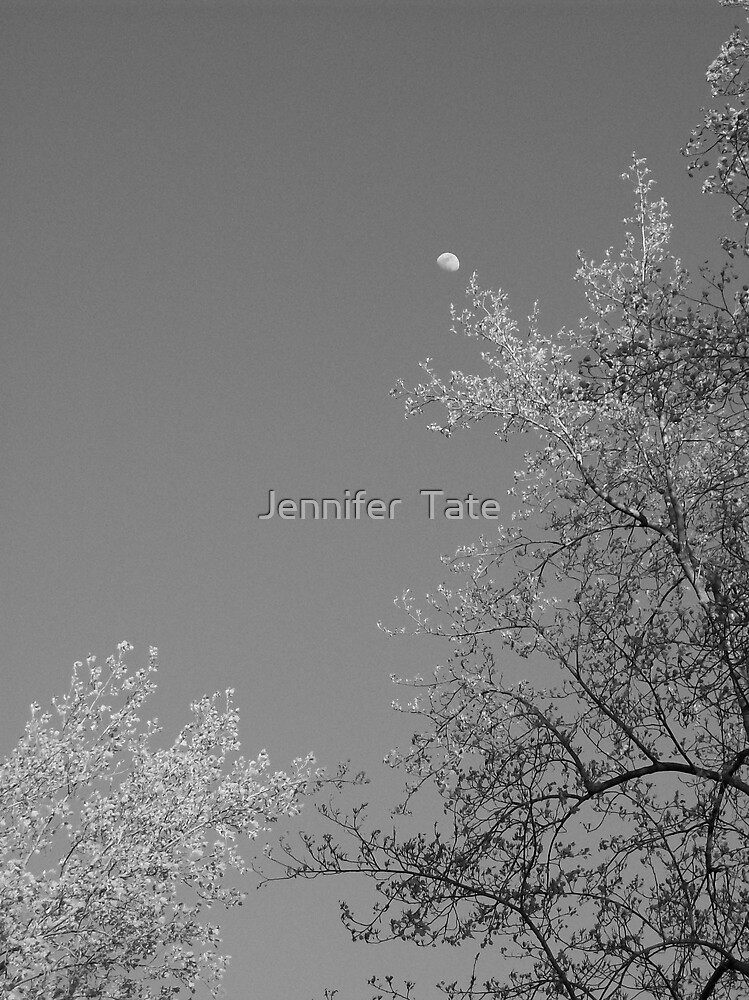 The Moon in BW by Jennifer  Tate