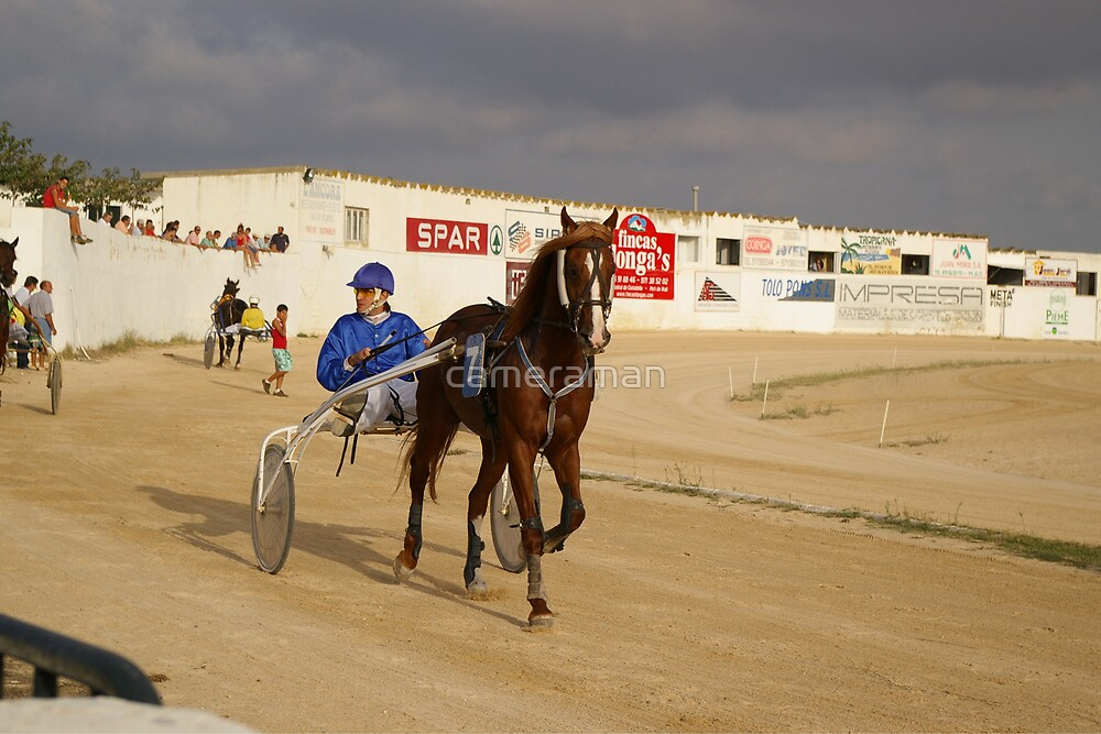 trotting races 4 by cameraman