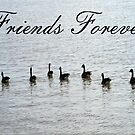 Friends Forever by RockyWalley