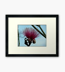 Red Mustache Brush Framed Print