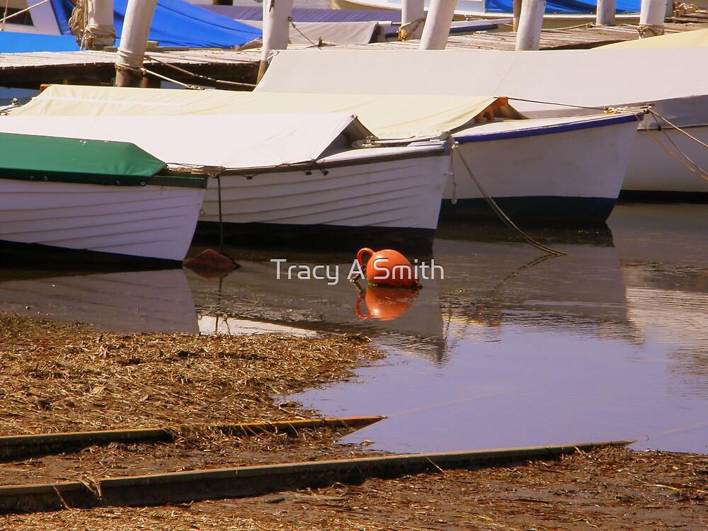 slipway buoy by Tracy A Smith