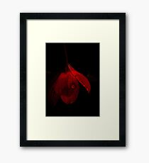 A Study in Red Framed Print