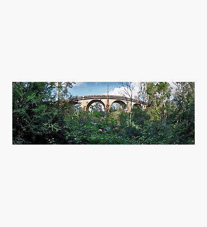 Lapstone Railway Bridge Photographic Print