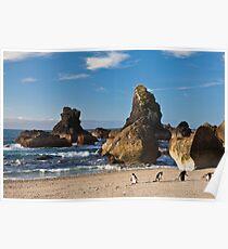 Fiordland Crested Penguin - New Zealand Poster