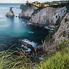 Coromandel Cliffs - New Zealand by Kimball Chen