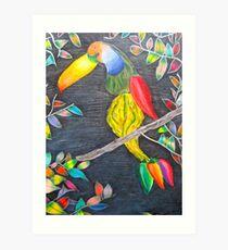 Toucan Gourd Art Print