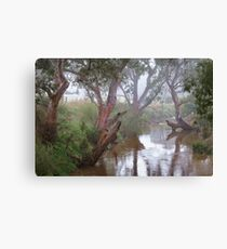 0465 Moorabool River - Geelong Canvas Print