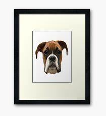Boxer Dog innit Framed Print