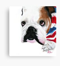Nosey British Bulldog ' REGGIE ' by Shirley MacArthur Canvas Print