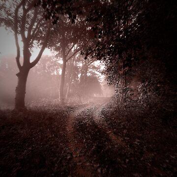 Misty Track by Knobrot