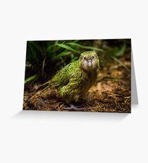 Sirocco the Kakapo Greeting Card