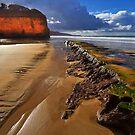 0470 Low tide - Anglesea by Hans Kawitzki