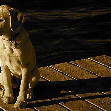 Sitting On The Dock Of The..... by Brynes