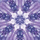 Violet and Magenta Fractal Kaleidoscope Mandala by Kelly Dietrich