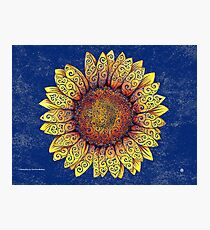 Swirly Sunflower Photographic Print