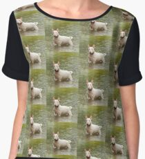 English Bull Terrier Women's Chiffon Top