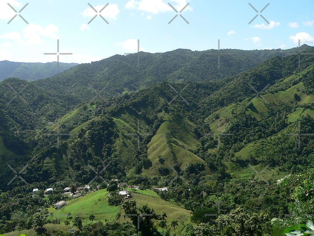 Puerto Rico Countryside by kevint
