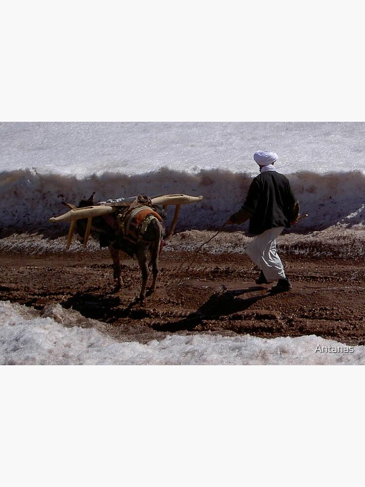 Afghanistan life by Antanas