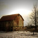 Quiet Barn by Karri Klawiter