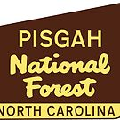 PISGAH NATIONAL FOREST NORTH CAROLINA HIKING CLIMBING CAMPING EXPLORE NATURE 2 by MyHandmadeSigns